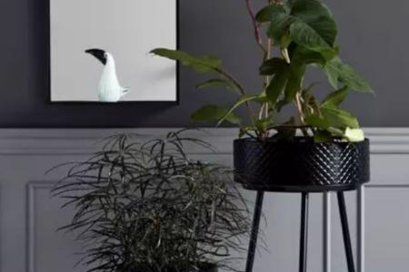 Le piédestal: un incontournable pour vos plantes